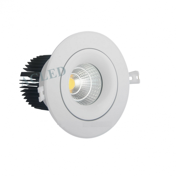 den led am tran 20w